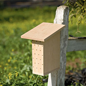 Поделки домик для пчел